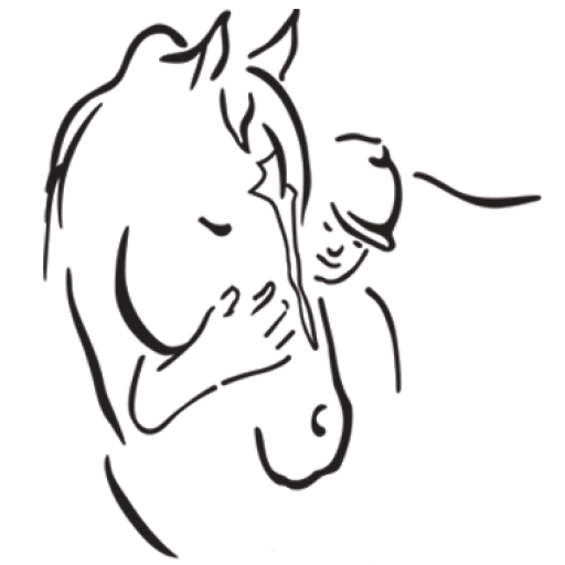 https://wp-nr8t95ykqo.pairsite.com/wp-content/uploads/2019/12/cropped-LLRC_horse_head.png